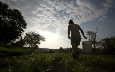Maine Credit Union to Support Farmers Amid Economic Uncertainty